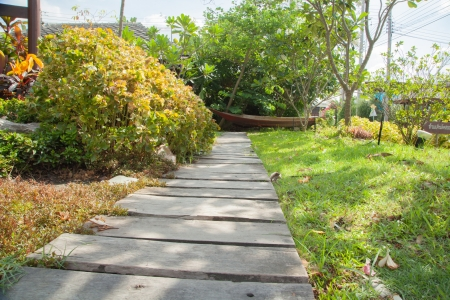 Wood walkway V photo