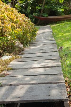 Wood walkway I photo