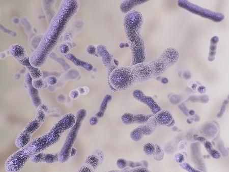 hiv: Bacteria