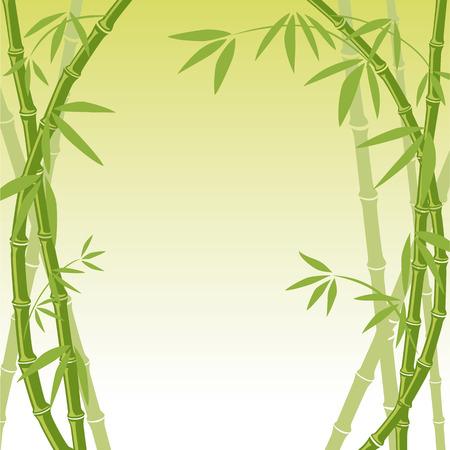 feuille de bambou: Arri�re-plan de bambou  Illustration
