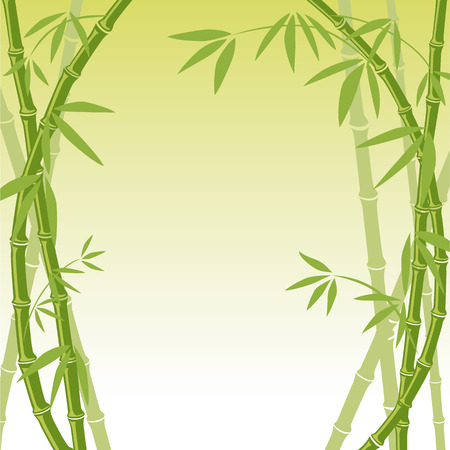 bamboo leaves: Bamboo Background  Illustration