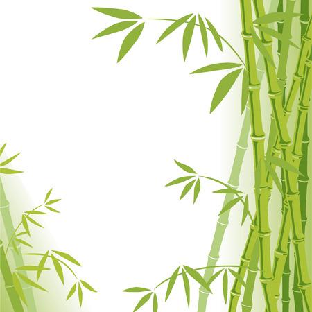 japanese garden: Bamboo Background  Illustration