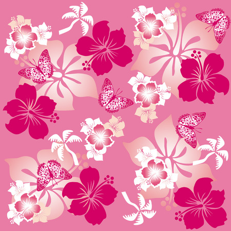 hibisco: Hibiscus patr�n