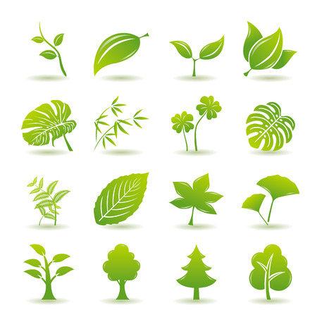 ferns: Green leaf icons set. Nature & ecology image.