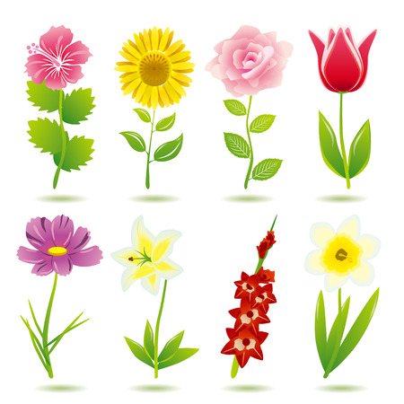 tulips in green grass: 8 flower icons set