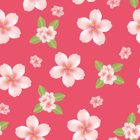 Seamless cherry blossom background  Vector