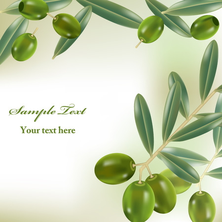 Realistic olives background. Illustration