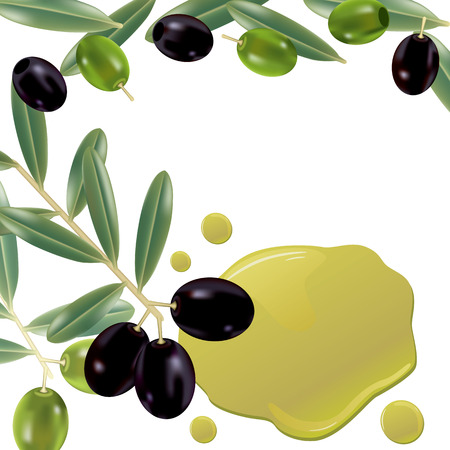 Realistic olive oil background. Illustration Stock Vector - 7556230