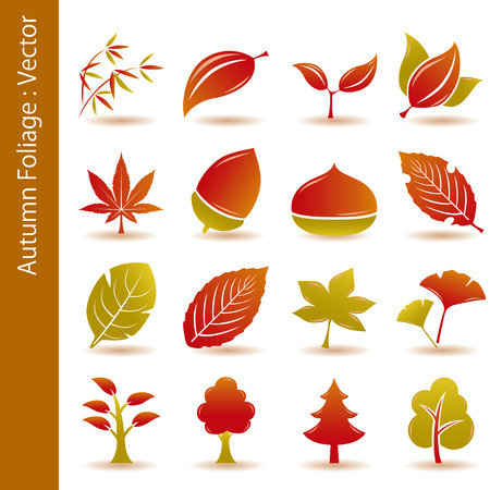 Autumn Foliage Leaf Icons Set Stock Vector - 7556231