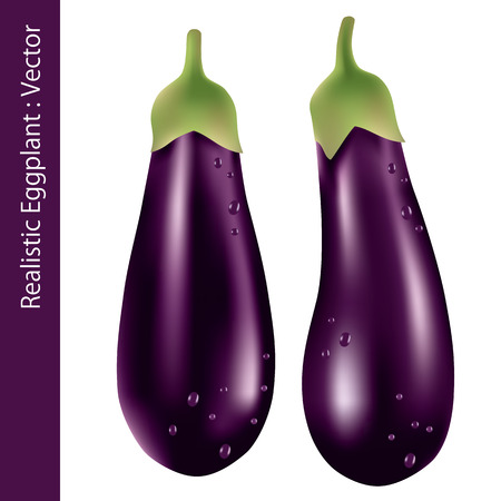 Realistic Eggplant