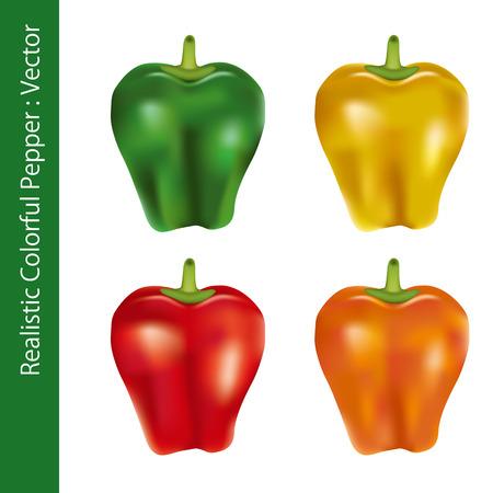 pimento: Realistic Colorful Pepper. Illustration vector. Illustration