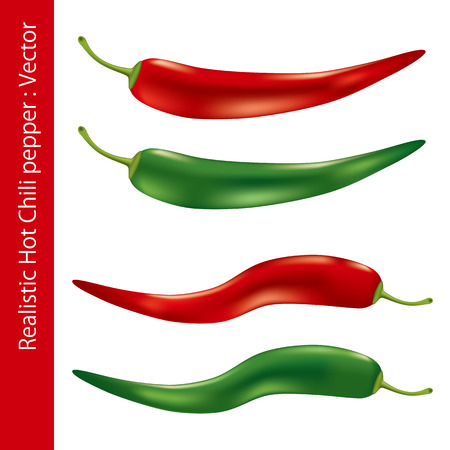 chilly: Realistic hot chili pepper. Illustration Illustration