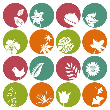 herbstblumen: Natur Icons Set. Abbildung Vektor.