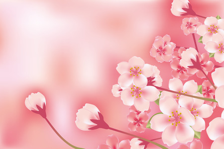 """cherry blossom"": Abstract Luxury Cherry Blossom Illustration"