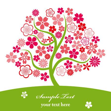 Cherry blossoms. Illustration vector. Vector