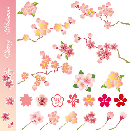 Cherry blossoms icons set. Illustration vector. Vector