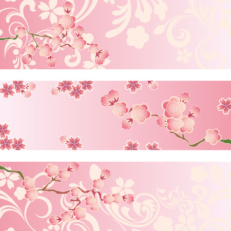 sakura flowers: Cherry blossom banner set. Illustration vector.