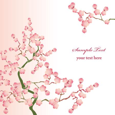 fleur cerisier: Fleurs de cerisier. Illustration vectorielle. Illustration