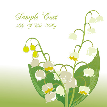 lily of the valley: Lily of the valley.