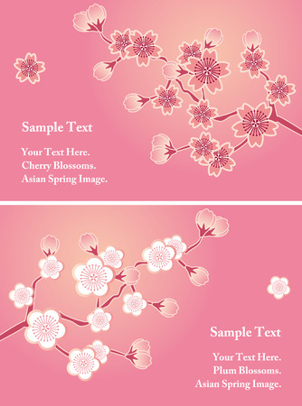 Cherry blossom cards set Stock Vector - 9055758