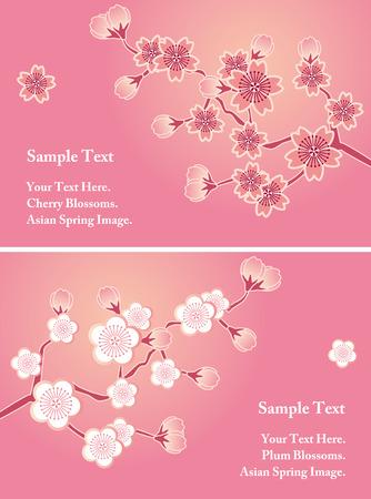 cerisier fleur: Jeu de cartes de cerisiers en fleurs Illustration