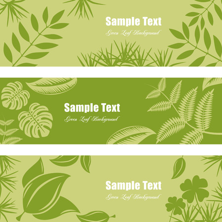 twigs: Green leaf banner set. Illustration  Illustration