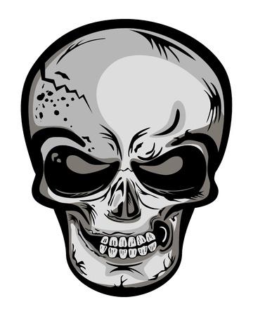 Skull head. Vector