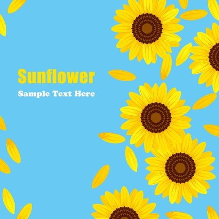 with pollen: Sunflower Frame. Illustration vector. Illustration
