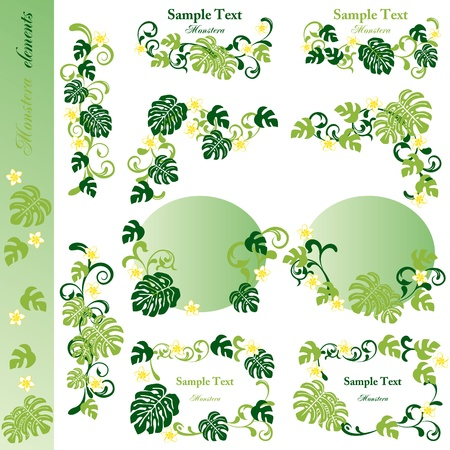 monstera: Monstera design elements. Illustration vector. Illustration