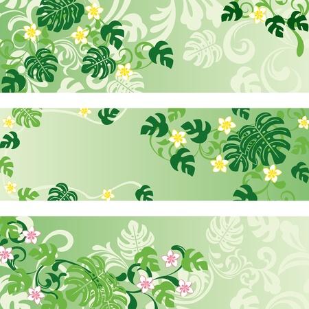 Monstera banners set.   イラスト・ベクター素材