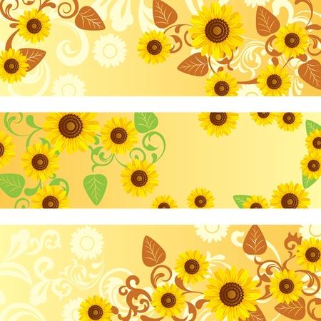 Sunflower banners set. 向量圖像