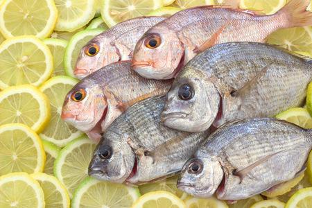 fresh sea fish. Zdjęcie Seryjne