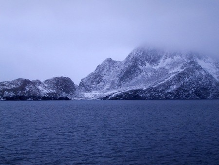 fog, water, nature, light, morning, background, landscape