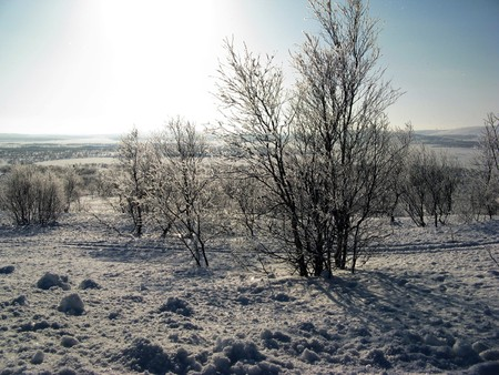 winter, snow, sun, mountain, landscape, sky, tree Stock Photo