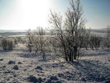 winter, snow, sun, mountain, landscape, sky, tree Stock Photo