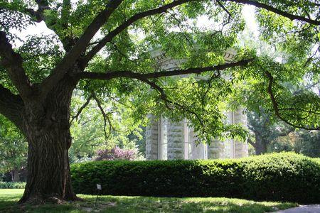 木の陰に石の記念碑 写真素材 - 439454