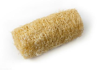cylindrica: Dry Luffa Cylindrica