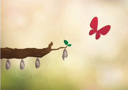 Concept to think different as a group of cocoon hanging on twig with an Butterfly flying out of the cocoon. as a Searching for opportunities. Business concept metaphor of thinking Çizim