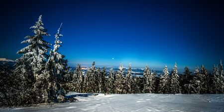 Mystical magical night landscape of snowy fir trees growing among the snowdrifts on the hills on a clear frosty winter starry night. Concept of environmentally friendly nature Reklamní fotografie