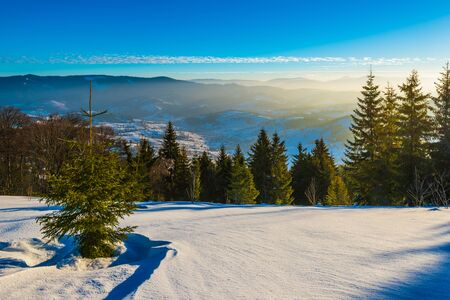 Beautiful panorama of a snowy slope with a forest and a view of the snowy mountain ranges covered in fog on a frosty sunny winter day. Winter mountain vacation concept