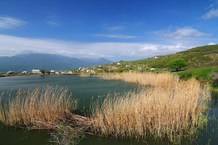 Lake with muddy water and growing reeds, blue sky and small village among the mountains 免版税图像