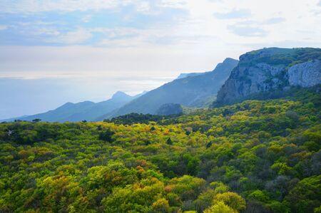 Schöne Landschaft auf der Krim, Blick von der Spitze des Berges Ai-Petri, Waldtal und weiße Wolken im Himmel Standard-Bild