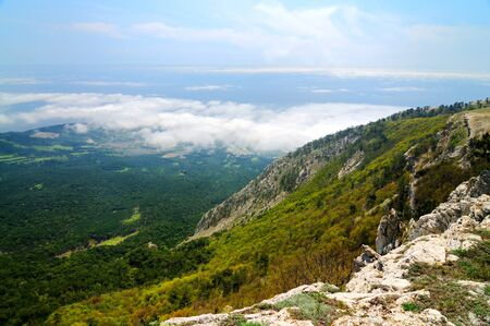 Photo from top of Ai-Petri mountain, tree grows on rock, beautiful horizon and blue sky with white clouds