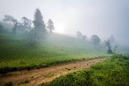 Fascinante paisaje místico de una carretera y un bosque que crece en la ladera de una montaña cubierta de una espesa niebla en una cálida mañana de verano. Concepto de viaje y naturaleza misteriosa Foto de archivo