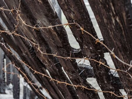 Burnt fence with barbed wire. The consequences of not careful and thoughtless handling of fire. Banque d'images