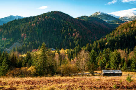 Beautiful hills covered with colorful autumn trees Standard-Bild