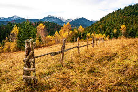 Multicolored forest in beautiful warm autumn and an old collapsed fence
