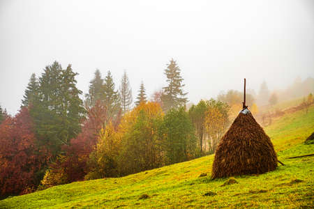 A large haystack stands on a green field among the dense gray fog Imagens