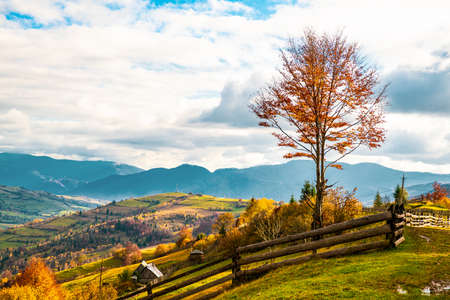 Village under the hills sheltered by autumn forests in the light of the bright sun in good weather Imagens