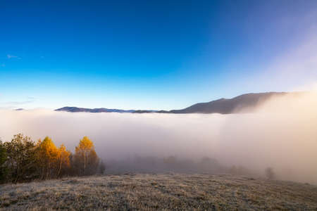 Grey mist covered with the colorful trees on mountain hils Imagens